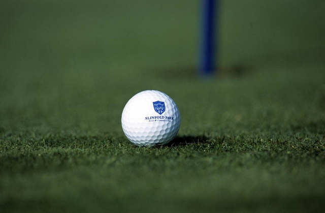 slinfold_park_golf_ball_640